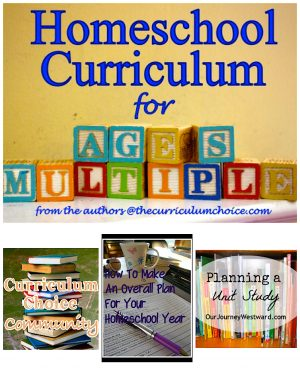 Choosing Homeschool Curriculum for Multiple Ages