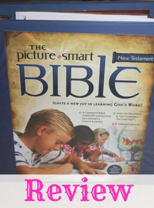 Picture Smart Bible Curriculum