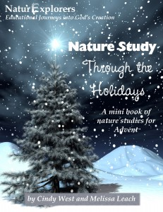 Holiday Fun from Our Review Authors