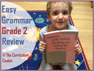 Easy Grammar – Grade 2 Review