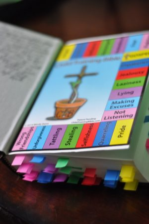 The Child Training Bible Review