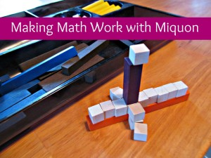 Making Math Work with Miquon