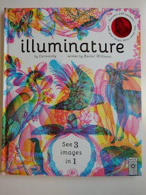 Illuminature Children's Book – A Review